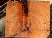 Top view of oak beam pedestal
