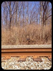 Tracks, bridge, & bike