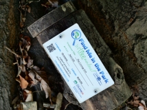 Did you find the geocache marker? There's a surprise inside.