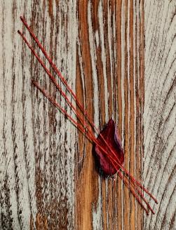 """""""Absolute: Earnest"""", (detail) Oil paint on reclaimed oak. 10 7/8"""" x 10 1/4"""". 11.11.15"""