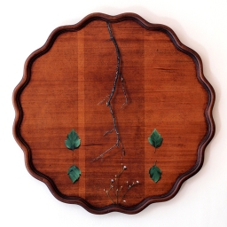 """Absolute: Position"", Oil paint on reclaimed mahogany pie crust table top. 25 1/2"" x 25 1/2"". 8.9.16."
