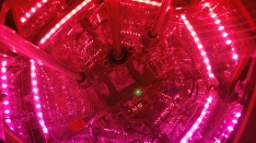Internal electronics in red light