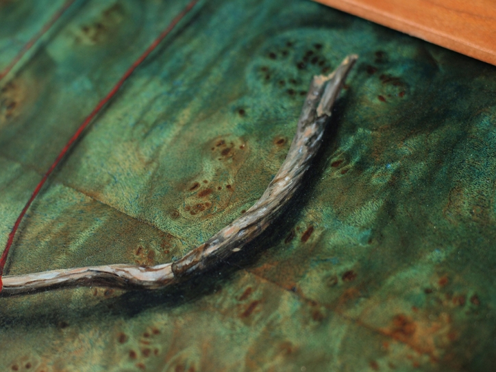 """""""Absolute: Balance"""" (painted branch detail)"""