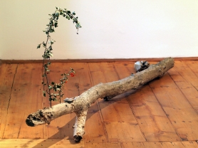 """Absolute: Arrangement 6"": quartz rock, violin key, log, flat stone, thread, feather, two tree branches with berries."